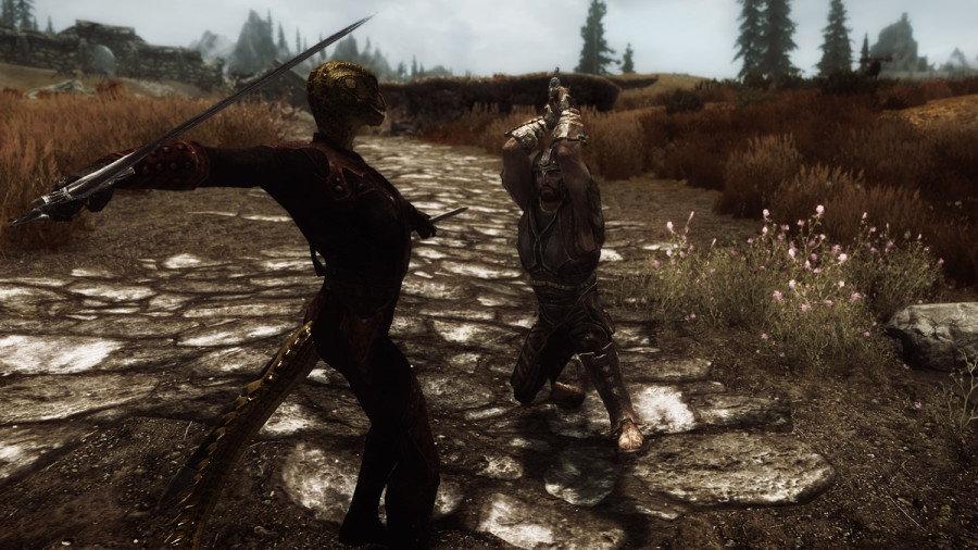 Avingard Battling an Assassin from the Dark Brotherhood.