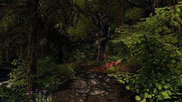 Enderal - Path in a Forest