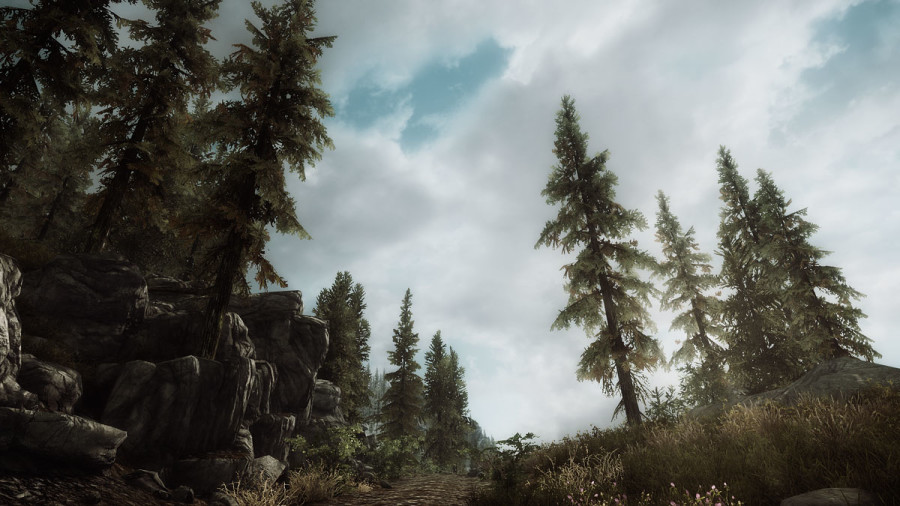 On the Road to Solitude